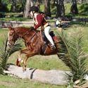 Tocumwal Pony Club