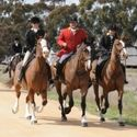 Tocumwal Closing Hunt 8th September 2012