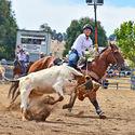 Junior Rodeos