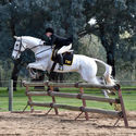 Northern Victorian Hunter Show @ Oxley Vic 23rd July 2017