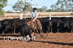 Image #DSC-3392--Stuart--<br />(This is a low resolution version of the original photo - Contact www.photosbysallyh.com.au to Purchase)