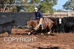 Image #DSC-3493--Riley-Boland-on-Little-Lena-Rey--<br />(This is a low resolution version of the original photo - Contact www.photosbysallyh.com.au to Purchase)