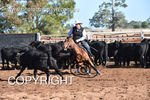 Image #DSC-3539--Leigh-Hurley-on-H-Bar-Accidental-Acres--<br />(This is a low resolution version of the original photo - Contact www.photosbysallyh.com.au to Purchase)