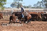 Image #DSC-3566--Ashleigh-Meagher-on-Acres-Outlaw--<br />(This is a low resolution version of the original photo - Contact www.photosbysallyh.com.au to Purchase)