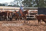 Image #DSC-3731--Cassie-Jarmain-on-Ritza-Street--<br />(This is a low resolution version of the original photo - Contact www.photosbysallyh.com.au to Purchase)
