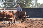 Image #DSC-3748--Michael-Jarmain-on-Smart-Cat-Chickasha--<br />(This is a low resolution version of the original photo - Contact www.photosbysallyh.com.au to Purchase)