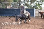 Image #DSC-3764--A.--<br />(This is a low resolution version of the original photo - Contact www.photosbysallyh.com.au to Purchase)