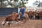 Image #DSC-3848--Allan--<br />(This is a low resolution version of the original photo - Contact www.photosbysallyh.com.au to Purchase)