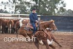 Image #DSC-3852--Allan--<br />(This is a low resolution version of the original photo - Contact www.photosbysallyh.com.au to Purchase)
