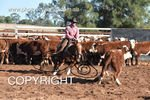 Image #DSC-3972--Corey-Holden-on-Amaroo-Stylish-Rebel--<br />(This is a low resolution version of the original photo - Contact www.photosbysallyh.com.au to Purchase)