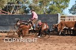 Image #DSC-3998--Corey-Holden-on-Erin-Chocolate-Royal--<br />(This is a low resolution version of the original photo - Contact www.photosbysallyh.com.au to Purchase)