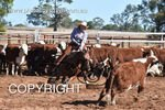 Image #DSC-4075--Trish-Preston-on-Bomaleos-Target--<br />(This is a low resolution version of the original photo - Contact www.photosbysallyh.com.au to Purchase)