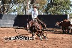 Image #DSC-4159--Ashleigh-Meagher-on-Acres-Outlaw--<br />(This is a low resolution version of the original photo - Contact www.photosbysallyh.com.au to Purchase)