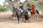 Image #DSC-6355<br />(This is a low resolution version of the original photo - Contact www.photosbysallyh.com.au to Purchase)