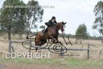 Image #DSC-6374<br />(This is a low resolution version of the original photo - Contact www.photosbysallyh.com.au to Purchase)