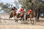 Image #DSC-6409<br />(This is a low resolution version of the original photo - Contact www.photosbysallyh.com.au to Purchase)