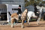 Image #DSC-7691<br />(This is a low resolution version of the original photo - Contact www.photosbysallyh.com.au to Purchase)