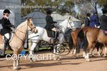 Image #DSC-7692<br />(This is a low resolution version of the original photo - Contact www.photosbysallyh.com.au to Purchase)
