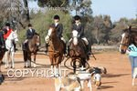Image #DSC-7694<br />(This is a low resolution version of the original photo - Contact www.photosbysallyh.com.au to Purchase)