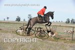 Image #DSC-7737<br />(This is a low resolution version of the original photo - Contact www.photosbysallyh.com.au to Purchase)