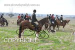 Image #DSC-7776<br />(This is a low resolution version of the original photo - Contact www.photosbysallyh.com.au to Purchase)