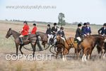 Image #DSC-7785<br />(This is a low resolution version of the original photo - Contact www.photosbysallyh.com.au to Purchase)