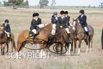 Image #DSC-7788<br />(This is a low resolution version of the original photo - Contact www.photosbysallyh.com.au to Purchase)