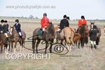 Image #DSC-7790<br />(This is a low resolution version of the original photo - Contact www.photosbysallyh.com.au to Purchase)