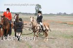 Image #DSC-7794<br />(This is a low resolution version of the original photo - Contact www.photosbysallyh.com.au to Purchase)