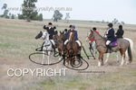 Image #DSC-7805<br />(This is a low resolution version of the original photo - Contact www.photosbysallyh.com.au to Purchase)