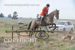Image #DSC-7828<br />(This is a low resolution version of the original photo - Contact www.photosbysallyh.com.au to Purchase)