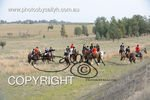Image #DSC-7854<br />(This is a low resolution version of the original photo - Contact www.photosbysallyh.com.au to Purchase)