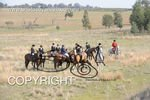Image #DSC-7860<br />(This is a low resolution version of the original photo - Contact www.photosbysallyh.com.au to Purchase)
