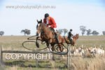 Image #DSC-7904<br />(This is a low resolution version of the original photo - Contact www.photosbysallyh.com.au to Purchase)