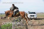 Image #DSC-7958<br />(This is a low resolution version of the original photo - Contact www.photosbysallyh.com.au to Purchase)