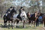 Image #DSC-7990<br />(This is a low resolution version of the original photo - Contact www.photosbysallyh.com.au to Purchase)