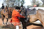 Image #DSC-7993<br />(This is a low resolution version of the original photo - Contact www.photosbysallyh.com.au to Purchase)