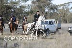 Image #DSC-7999<br />(This is a low resolution version of the original photo - Contact www.photosbysallyh.com.au to Purchase)