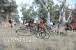 Image #DSC-8003<br />(This is a low resolution version of the original photo - Contact www.photosbysallyh.com.au to Purchase)