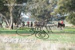 Image #DSC-8007<br />(This is a low resolution version of the original photo - Contact www.photosbysallyh.com.au to Purchase)