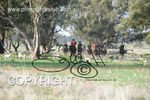 Image #DSC-8008<br />(This is a low resolution version of the original photo - Contact www.photosbysallyh.com.au to Purchase)