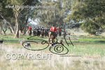 Image #DSC-8009<br />(This is a low resolution version of the original photo - Contact www.photosbysallyh.com.au to Purchase)