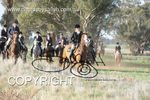 Image #DSC-8013<br />(This is a low resolution version of the original photo - Contact www.photosbysallyh.com.au to Purchase)