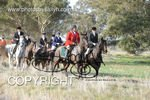 Image #DSC-8017<br />(This is a low resolution version of the original photo - Contact www.photosbysallyh.com.au to Purchase)