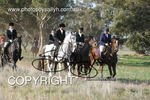 Image #DSC-8018<br />(This is a low resolution version of the original photo - Contact www.photosbysallyh.com.au to Purchase)