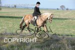 Image #DSC-8024<br />(This is a low resolution version of the original photo - Contact www.photosbysallyh.com.au to Purchase)
