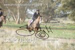 Image #DSC-8025<br />(This is a low resolution version of the original photo - Contact www.photosbysallyh.com.au to Purchase)