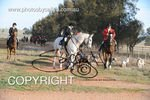 Image #DSC-8034<br />(This is a low resolution version of the original photo - Contact www.photosbysallyh.com.au to Purchase)