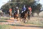 Image #DSC-8042<br />(This is a low resolution version of the original photo - Contact www.photosbysallyh.com.au to Purchase)