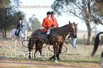 Image #DSC-8046<br />(This is a low resolution version of the original photo - Contact www.photosbysallyh.com.au to Purchase)